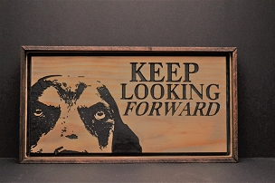 Keep Looking Forward with Frame