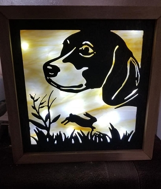 Beagle Light Box